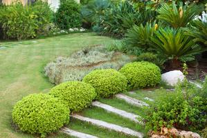 création paysagère, aénagement de jardin dans le Val d'oise à Cergy, Pontoise, Vauréal et dans tout le 95